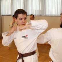 2018_04 Black Belt Training mit Sensei Thomas Geiger (14)