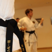 2018_04 Black Belt Training mit Sensei Thomas Geiger (5)