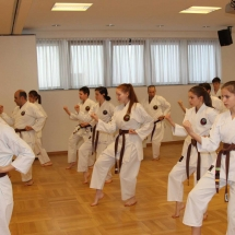 2018_04 Black Belt Training mit Sensei Thomas Geiger (6)
